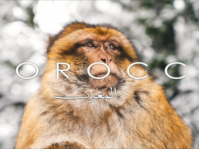 10 Days in Morocco | Oscar Minyo