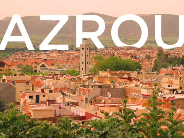 Day trip to Azrou and the Amazigh Market