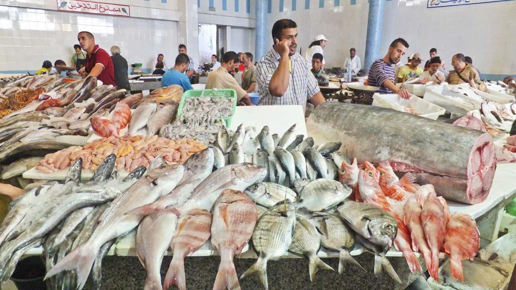 tangier-Eat-seafood-visit-morocco
