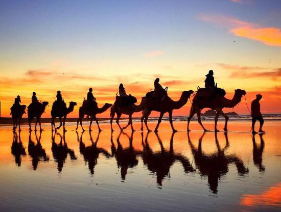 travel-to-agadir-camel-ride
